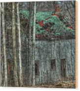 Abandoned In The Woods. Wood Print