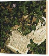 Abandoned Kp Book 2 Wood Print