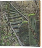 Abandoned Miniature Railway Wood Print