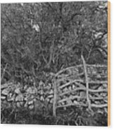 Abandoned Minorcan Country Gate Wood Print