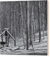 Abandoned New England Sugarhouse Wood Print