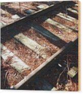 Abandoned Railtracks Wood Print