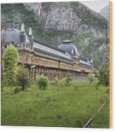 Abandoned Side Of The Canfranc International Railway Station Wood Print