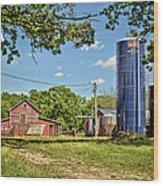 Abandoned Spring Farm Wood Print