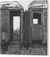 Abandoned Train Cars B Wood Print