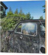 Abandoned Vehicles - Veicoli Abbandonati  2 Wood Print