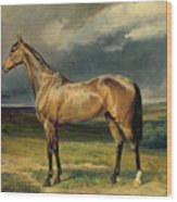 Abdul Medschid The Chestnut Arab Horse Wood Print