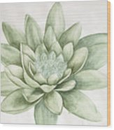 Abhi13 Wood Print