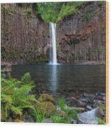 Abiqua Falls In Summer Wood Print