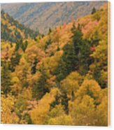 Ablaze With Autumn Glory Wood Print