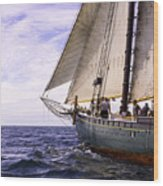 Aboard The Adventurer Wood Print