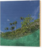 Blue Palette  Wood Print
