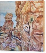Above Canyonlands Campground Wood Print
