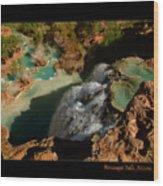 Above Havasupai Falls Arizona Wood Print