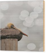 Above It All - Brown Pelican Wood Print
