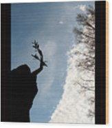 Above Wood Print