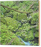 Above Moine Creek Wood Print