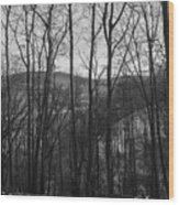 Above The Allegheny  Wood Print