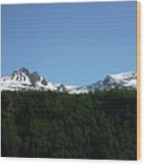 Above The Treetops Wood Print
