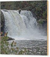 Abrams Falls Cades Cove Tn Wood Print