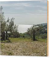 Abruzzo - An Italian Landscape  Wood Print