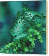 Absolute Flower Gloria Catus 1 No. 1 B H A Wood Print