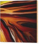 Abstract 02-12-10 Wood Print