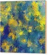 Abstract 06-28-09 Wood Print