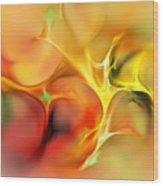 Abstract 061410a Wood Print