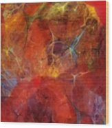 Abstract 081310 Wood Print