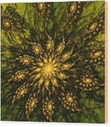 Abstract 090110 Wood Print