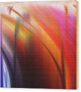 Abstract 0902 C Wood Print