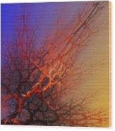 Abstract 112810a Wood Print