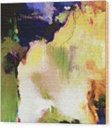 Abstract #36 Wood Print