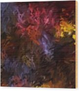 Abstract 5-23-09 Wood Print by David Lane