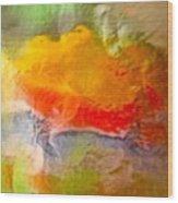 Abstract 6048 Wood Print
