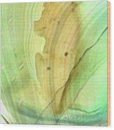 Abstract Art - Calm - Sharon Cummings Wood Print