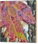 Abstract Autumn Leaf 2 Wood Print