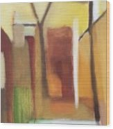 Abstract Backyard 2008 Wood Print