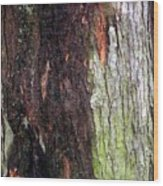 Abstract Bark 15 Wood Print