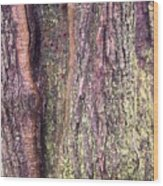 Abstract Bark 3 Wood Print