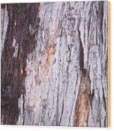 Abstract Bark 8 Wood Print