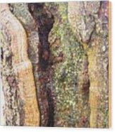 Abstract Bark Wood Print