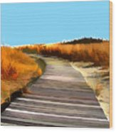 Abstract Beach Dune Boardwalk Wood Print