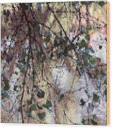 Abstract Birch Wood Print