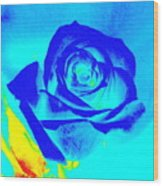 Single Blue Rose Abstract Wood Print