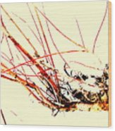 Abstract Branch Wood Print