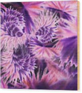 Abstract Burst Of Flowers Wood Print