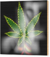 Abstract Cannabis Background Wood Print