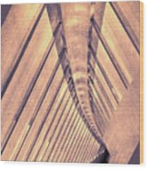 Abstract Corridor Architecture Wood Print